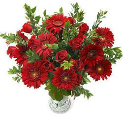 5 adet kirmizi gül 5 adet gerbera aranjmani  Elazığ yurtiçi ve yurtdışı çiçek siparişi