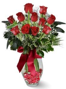 9 adet gül  Elazığ İnternetten çiçek siparişi  kirmizi gül