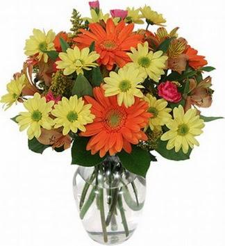 Elazığ çiçek siparişi sitesi  vazo içerisinde karışık mevsim çiçekleri