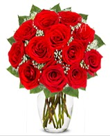 12 adet vazoda kıpkırmızı gül  Elazığ çiçek satışı