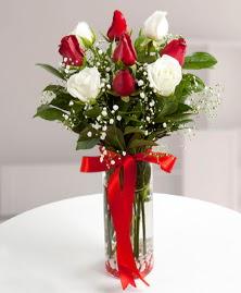 5 kırmızı 4 beyaz gül vazoda  Elazığ çiçek , çiçekçi , çiçekçilik