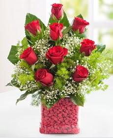 Cam içerisinde 9 adet kırmızı gül  Elazığ İnternetten çiçek siparişi