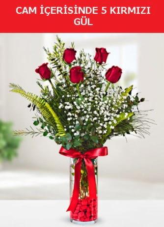 Cam içerisinde 5 adet kırmızı gül  Elazığ çiçek yolla , çiçek gönder , çiçekçi