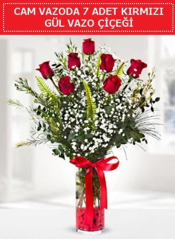 Cam vazoda 7 adet kırmızı gül çiçeği  Elazığ anneler günü çiçek yolla