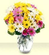 Elazığ çiçek yolla  mevsim çiçekleri mika yada cam vazo
