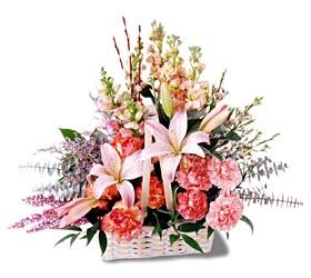 Elazığ çiçek yolla , çiçek gönder , çiçekçi   mevsim çiçekleri sepeti özel tanzim