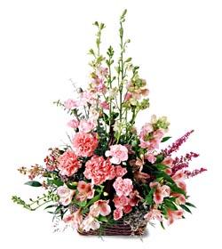 Elazığ güvenli kaliteli hızlı çiçek  mevsim çiçeklerinden özel