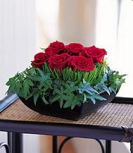 Elazığ çiçek yolla , çiçek gönder , çiçekçi   10 adet kare mika yada cam vazoda gül tanzim