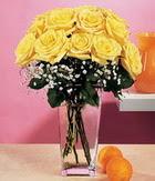 Elazığ İnternetten çiçek siparişi  9 adet sari güllerden cam yada mika vazo