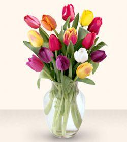 Elazığ çiçek gönderme sitemiz güvenlidir  13 adet cam yada mika vazoda laleler