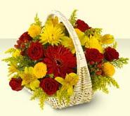 Elazığ hediye çiçek yolla  sepette mevsim çiçekleri
