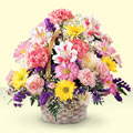 Elazığ ucuz çiçek gönder  sepet içerisinde gül ve mevsim