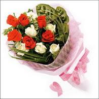 5 kirmizi 5 beyaz güllerden   Elazığ çiçekçi telefonları