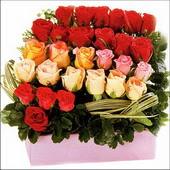 15 adet renkli gül ve cam   Elazığ online çiçekçi , çiçek siparişi