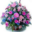 karisik mevsim kir çiçekleri  Elazığ anneler günü çiçek yolla