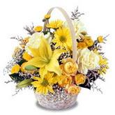 sadece sari çiçek sepeti   Elazığ anneler günü çiçek yolla