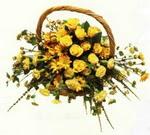 sepette  sarilarin  sihri  Elazığ çiçek , çiçekçi , çiçekçilik