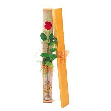 ince  kutuda  1  gül   Elazığ hediye sevgilime hediye çiçek