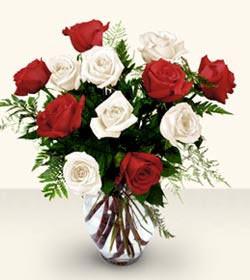 Elazığ ucuz çiçek gönder  6 adet kirmizi 6 adet beyaz gül cam içerisinde