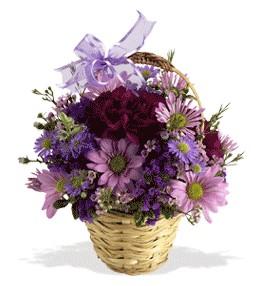 Elazığ ucuz çiçek gönder  sepet içerisinde krizantem çiçekleri