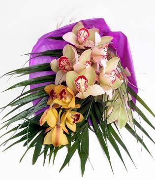 Elazığ çiçek , çiçekçi , çiçekçilik  1 adet dal orkide buket halinde sunulmakta