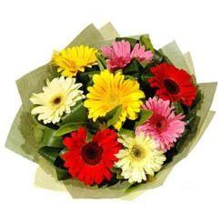 9 adet karisik gerbera demeti  Elazığ internetten çiçek siparişi