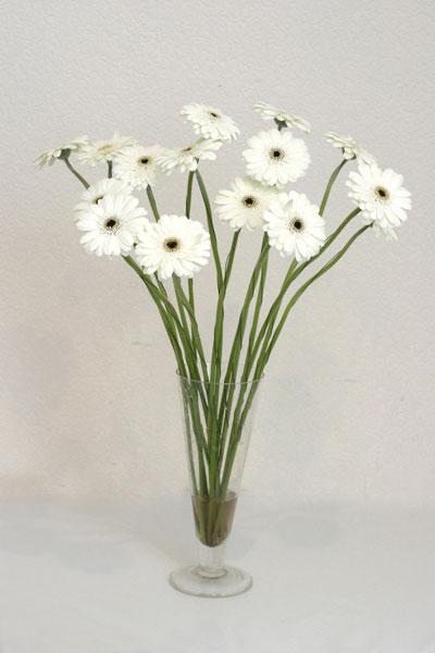 Elazığ internetten çiçek siparişi  cam vazo içerisinde 17 adet sade gerbera