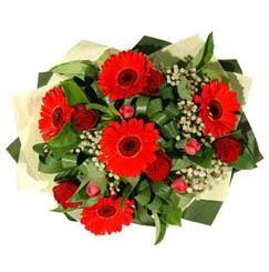 Elazığ güvenli kaliteli hızlı çiçek   5 adet kirmizi gül 5 adet gerbera demeti