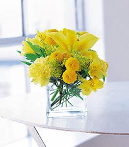 Elazığ güvenli kaliteli hızlı çiçek  sarinin sihri cam içinde görsel sade çiçekler