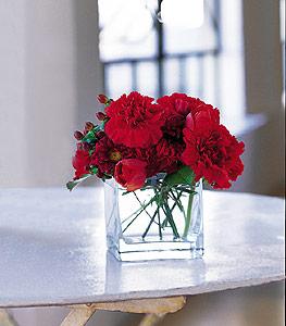 Elazığ güvenli kaliteli hızlı çiçek  kirmizinin sihri cam içinde görsel sade çiçekler