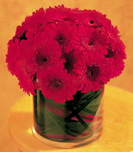 Elazığ güvenli kaliteli hızlı çiçek  23 adet gerbera çiçegi sade ve sik cam içerisinde