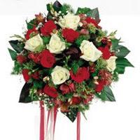 Elazığ güvenli kaliteli hızlı çiçek  6 adet kirmizi 6 adet beyaz ve kir çiçekleri buket