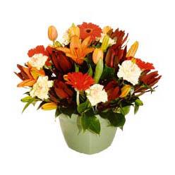 mevsim çiçeklerinden karma aranjman  Elazığ uluslararası çiçek gönderme