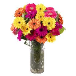 KARISIK GERBERALARDAN CAM VAZO TANZIMI  Elazığ online çiçek gönderme sipariş