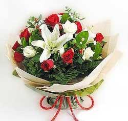 güller ve kazablanklardan görsel bir buket  Elazığ İnternetten çiçek siparişi