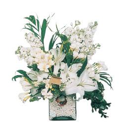 Elazığ çiçek yolla  sadece beyazlardan olusmus mevsim cam yada mika tanzim
