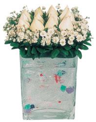 Elazığ online çiçekçi , çiçek siparişi  7 adet beyaz gül cam yada mika vazo tanzim