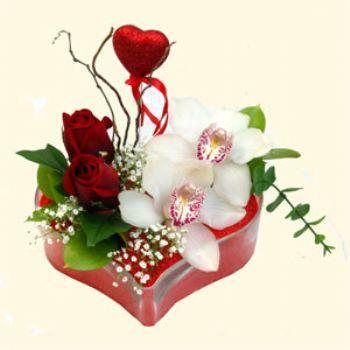 Elazığ çiçek siparişi sitesi  1 kandil orkide 5 adet kirmizi gül mika kalp
