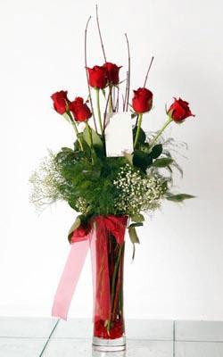 Elazığ çiçek , çiçekçi , çiçekçilik  6 adet kirmizi gül ve cam yada mika vazo
