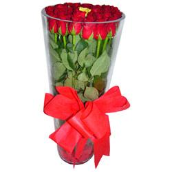 Elazığ internetten çiçek satışı  12 adet kirmizi gül cam yada mika vazo tanzim
