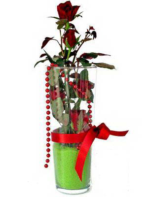 Elazığ çiçekçi telefonları  Cam yada mika içerisinde 9 adet kirmizi gül - sevdiklerinize özel