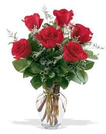 Elazığ anneler günü çiçek yolla  7 adet kirmizi gül cam yada mika vazoda sevenlere