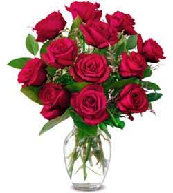 Elazığ çiçekçi telefonları  1 düzine kirmizi gül sevenlere özel vazo gülleri