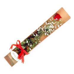 Elazığ kaliteli taze ve ucuz çiçekler  Kutuda tek 1 adet kirmizi gül çiçegi