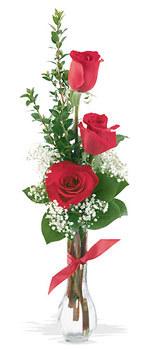 Elazığ çiçek , çiçekçi , çiçekçilik  mika yada cam vazoda 3 adet kirmizi gül