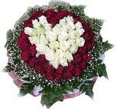 Elazığ internetten çiçek siparişi  27 adet kirmizi ve beyaz gül sepet içinde