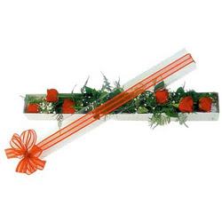 Elazığ çiçek yolla , çiçek gönder , çiçekçi   6 adet kirmizi gül kutu içerisinde