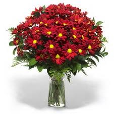 Elazığ hediye sevgilime hediye çiçek  Kir çiçekleri cam yada mika vazo içinde