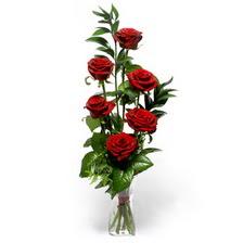 Elazığ ucuz çiçek gönder  mika yada cam vazoda 6 adet essiz gül