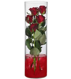 cam içerisinde 7 adet kirmizi gül  Elazığ çiçek gönderme sitemiz güvenlidir